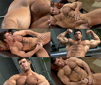 Zeb_atlas_hairy_01