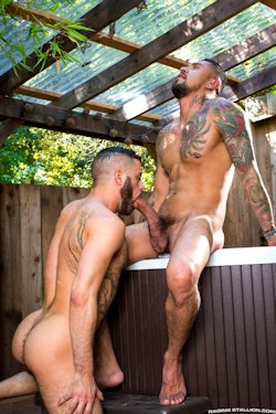 Boomer_banks_10inch_cock_01