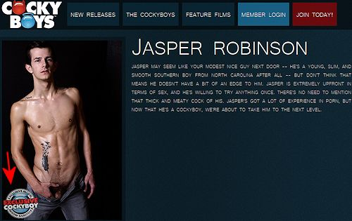 Jasper_robinson_notdonewith_gayporn_03