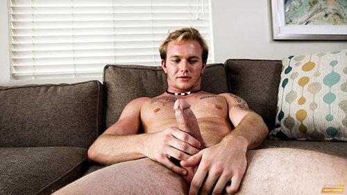 Newguy_rextanner_nds_02